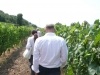 vini-buoni-088