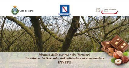 INVITO DEF.teano-page-0